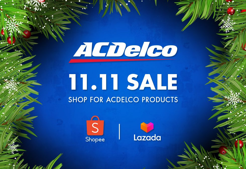 ACDelco 11.11 SALE